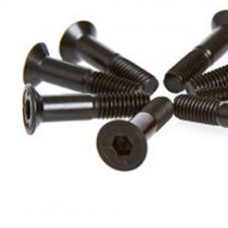 Skateboard Bolt & Nut Set - 1""